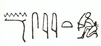 nesejet